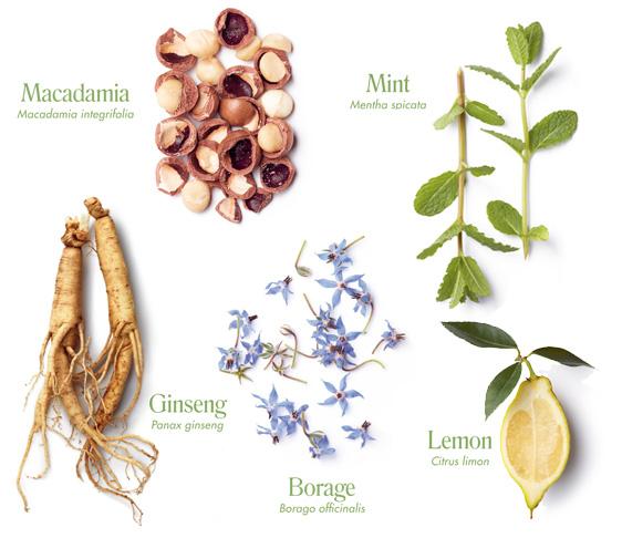 botanique intense