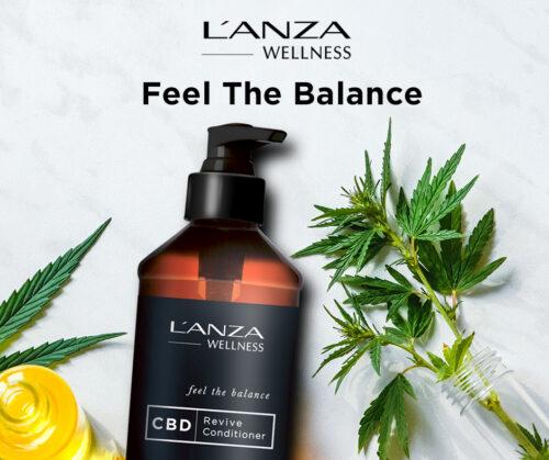 l'anza CBD conditioner